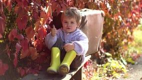 Śliczny dzieciaka obsiadanie na jesieni spadać opuszcza w parku Mała i bardzo śliczna chłopiec w roczniku odziewa z walizką na je zdjęcie wideo
