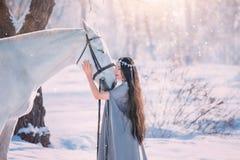 Śliczny elfa princess w długiej szarej pelerynie i rocznik ubieramy obok bielu, dziewczyna z długimi czarnymi falistymi kędzierza zdjęcia royalty free
