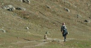 Śliczny husky pies z jego mistrzem przy naturą bawić się wraz z dużym kijem zbiory wideo
