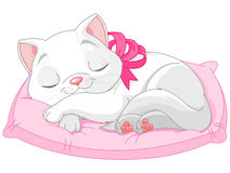 śliczny kota biel ilustracji