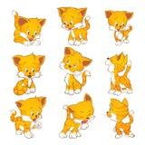 śliczny kota kolor żółty ilustracja wektor