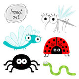 Śliczny kreskówka insekta set Biedronka, dragonfly, komar, pająk, dżdżownica Zdjęcie Stock