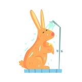 Śliczny kreskówka królika nacieranie himself piankowy gąbki skąpanie podczas gdy stojący w prysznic kabinowym kolorowym charakter ilustracja wektor