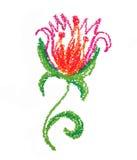 śliczny kwiat obraz royalty free