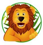 śliczny lew Zdjęcia Royalty Free