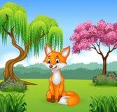 Śliczny lisa obsiadanie w dżungli royalty ilustracja