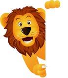 śliczny lwa znaka biel Zdjęcia Royalty Free