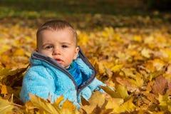 Śliczny mały chłopiec obsiadanie w liściach klonowych fotografia royalty free