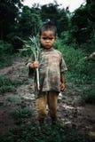 śliczny mały dzieciak trzyma niektóre uprawy w wiejskim wieś tropikalnym lesie deszczowym południowo-wschodni Asia zdjęcie stock
