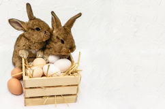 Śliczny mały Easter królik z drewnianym pudełkiem pełno Easter jajka Zdjęcie Royalty Free