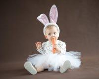 Śliczny mały królik Obrazy Royalty Free
