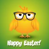 Śliczny mały kurczak w podbitych oczu szkłach na zielonym tle Fotografia Stock