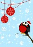 Śliczny mały ptak z Bożenarodzeniowymi piłkami Obraz Stock