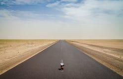 Śliczny miękkiej części zabawki obsiadanie w środku pusta pustynna droga z pomniejszać perspektywę, Mauretania, Afryka Obraz Royalty Free