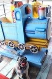 Śliczny mopsa pies siedzi na drewnianej podłodze Pięknym zabawka pociągu i zdjęcie royalty free