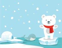 Śliczny niedźwiedzia polarnego i wieloryba tło Zdjęcie Stock