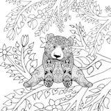 Śliczny panda niedźwiedź na gałąź Zdjęcia Royalty Free