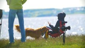 Śliczny pies trzyma frisbee jego kochanki obsiadanie na campingu krześle outdoors na wzgórzu zdjęcie wideo