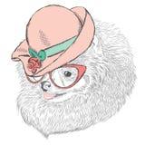 Śliczny pies w damy ` kapeluszu i okularach przeciwsłonecznych Obraz Royalty Free