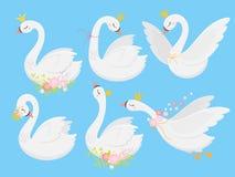 Śliczny princess łabędź Piękni biali łabędź w złocistej koronie, kreskówka gęsim ptaku i kaczątko ilustraci wektorowym secie, royalty ilustracja