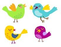 Śliczny ptaka wektoru set zdjęcia stock