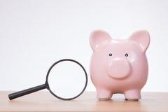 Śliczny różowy prosiątko bank z powiększać - szkło obrazy stock