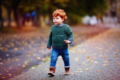 Śliczny rudzielec berbecia chłopiec odprowadzenie na jesieni miasta ulicie w trykotowym pulowerze i cajgach Fotografia Stock