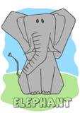 Śliczny słoń. Obraz Stock
