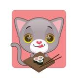 Śliczny szary kot chętny jeść suszi Fotografia Stock