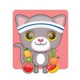 Śliczny szary kot z udziałami owoc Obraz Royalty Free