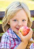 Śliczny szczęśliwy dziecko w wieku szkolnym je jabłka zdjęcie stock