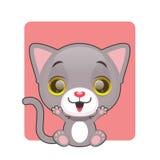 Śliczny szczęśliwy szary kot Fotografia Royalty Free