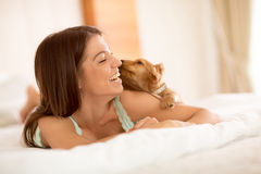Śliczny szczeniak obwąchuje dziewczyny w łóżku Zdjęcia Stock