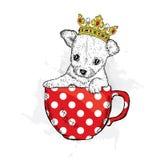 Śliczny szczeniak z koroną siedzi w filiżance Wyki ilustracja dla pocztówki lub plakata, druk na odziewa Rodowodu pies Chihuahua ilustracja wektor