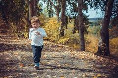 Śliczny uśmiechnięty chłopiec bieg w jesień parku Zdjęcia Stock