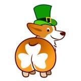Śliczny uśmiechnięty Welsh corgi pies w zielonej leprechaun odgórnego kapeluszu kreskówki ilustracji odizolowywającej na białym t zdjęcia royalty free