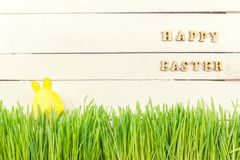 Śliczny Wielkanocny królik w zielonym świeżym kraju Żółty wielkanoc jaj Obraz Stock