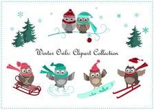Śliczny zim sów sztandar Dziecko sport i ptaki royalty ilustracja