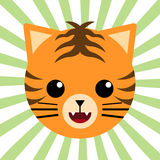 Śliczny Zwierzęcy dziecko tygrys Obrazy Royalty Free