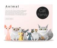 Śliczny zwierzęcy rodzinny tło z kotami Zdjęcia Royalty Free