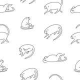 Ślicznych małych małp czarny i biały wzór Fotografia Stock