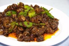 Ślimaczek smażony z curry'ego kumberlandem obraz stock