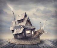Ślimaczka dom zdjęcia royalty free