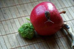 Ślimaczka obsiadanie na czerwonym jabłku i drzewny bagażnik i iść zielenieć brokuły, drewniany bambusowy tło, zakończenia zwierzę obraz stock