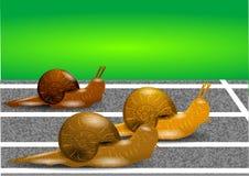 Ślimaczki na torze wyścigów konnych Fotografia Royalty Free
