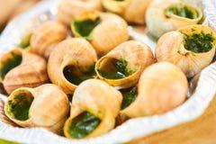 Ślimaczki od Burgundy zdjęcie stock