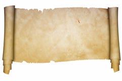 Ślimacznica pergamin na białym tle royalty ilustracja