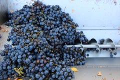 Ślimakowata prasa dla miażdżących winogron Fotografia Stock