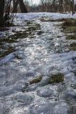 Śliski footpath w zima parku lodowata road zdjęcie royalty free