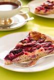 Śliwka tort Zdjęcie Royalty Free